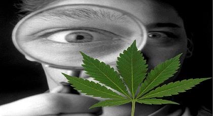 Αρκεί η πρόληψη για την καταπολέμηση των ναρκωτικών;