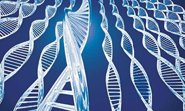 Ανακαλύφθηκε γονίδιο που εξαλείφει τον πόνο!