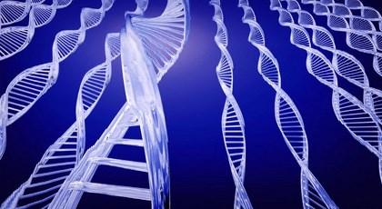 Όχι στις πατέντες των ανθρώπινων γονιδίων