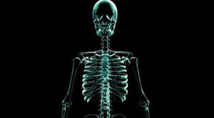 """Ανθρώπινα όργανα """"γεννιούνται"""" στο εργαστήριο"""
