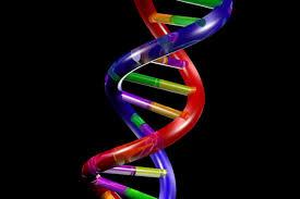 Πόσα μυστικά ακόμη κρύβει το DNA;