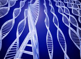 Γονιδιακή διατροφή: Εξερευνώντας τις αποδείξεις