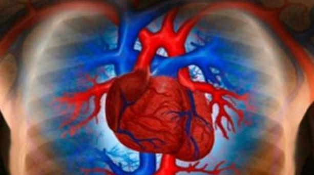 Αλγόριθμος του ΜΙΤ μετρά τους καρδιακούς παλμούς βάσει video