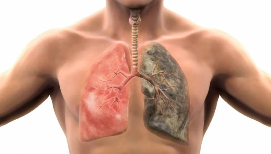 Έρευνα: Kαταστροφικό το καθημερινό κάπνισμα – Προκαλεί 150 μεταλλάξεις σε κάθε πνευμονικό κύτταρο