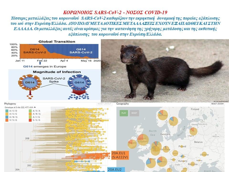 Δύο πολύ μεταδοτικές μεταλλάξεις του κορωνοϊού έχουν εξαπλωθεί  στην Ελλάδα