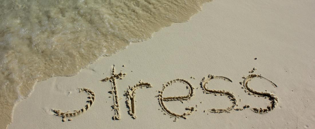 Άγχος: Πώς να το αντιμετωπίσετε φυσικά – Οι τροφές «αγχολυτικά»
