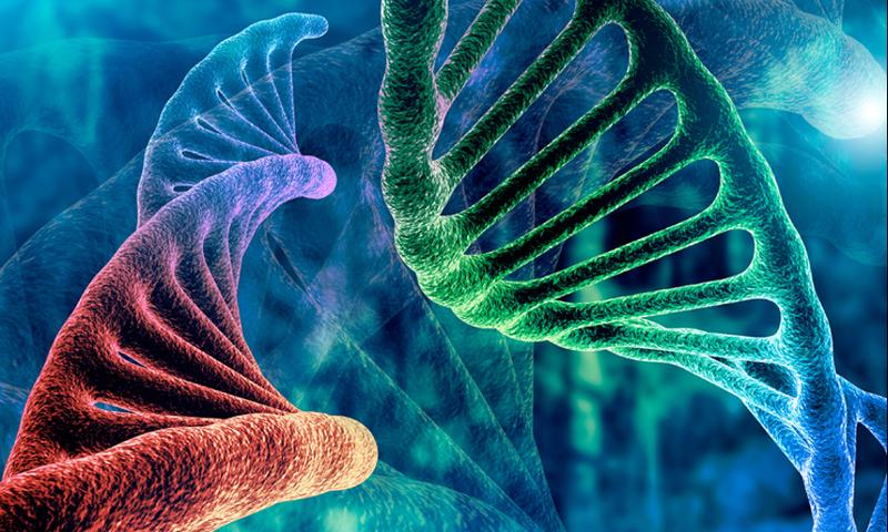 Καρκίνος: Ενθαρρυντικά νέα – έρευνες μιλούν για σημαντική ανακάλυψη θεραπείας