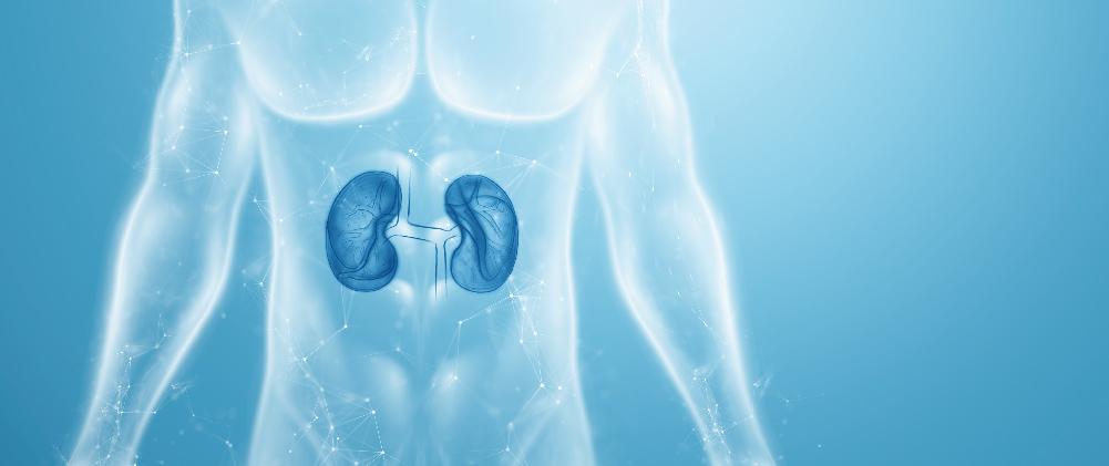 Νέες εξελίξεις στην αντιμετώπιση του καρκίνου του νεφρού