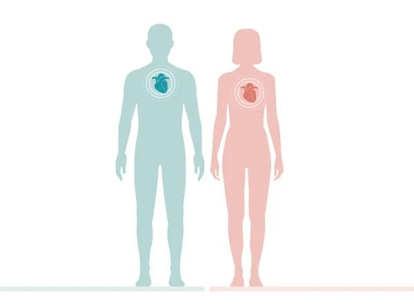 Άνδρες – Γυναίκες: Σε τι διαφέρουν ως προς τις καρδιακές παθήσεις