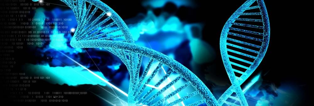 Οι αιωνόβιοι ζουν περισσότερο επειδή έχουν πιο αποτελεσματικό σύστημα επιδιόρθωσης βλαβών του DNA