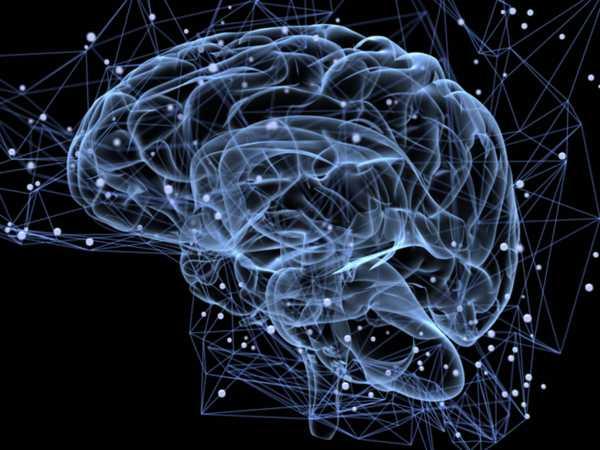 Αλγόριθμος ρίχνει φως στο γενετικό υπόβαθρο της σχιζοφρένειας
