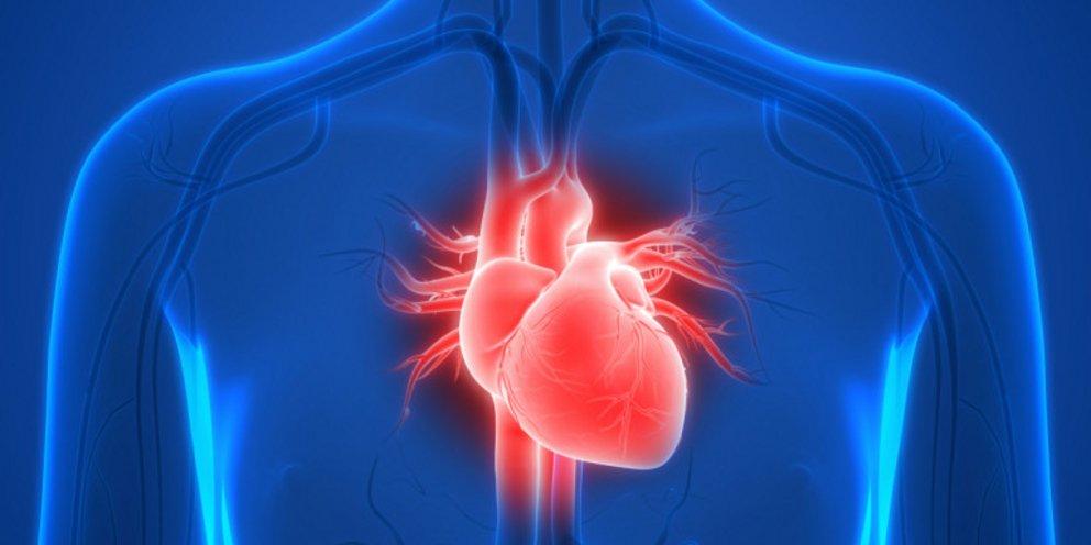 Κορωνοϊός και επιδράσεις στην καρδιά: Aπαντήσεις από τον καρδιολόγο Βασίλειο Γιόγακα
