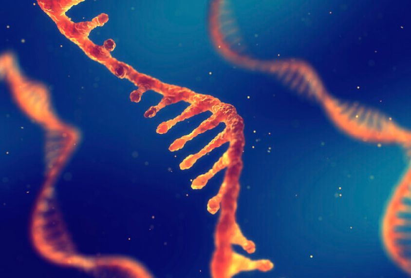 Aυτοί οι ιοί αυξάνουν τον κίνδυνο ανάπτυξης καρκίνου